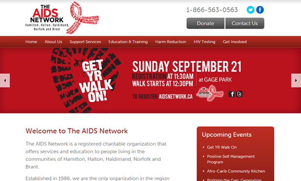 The AIDS Network website design