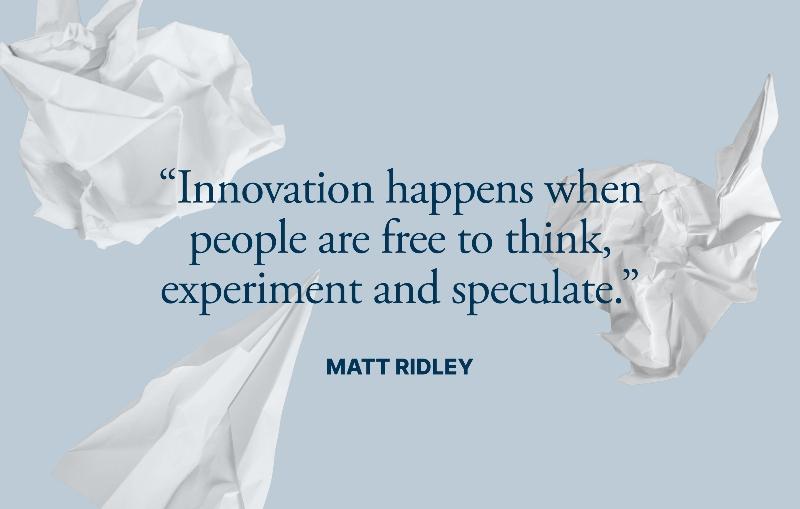 Innovation quote by Matt Ridley