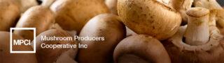 Mushroom Producers Cooperative Inc Banner