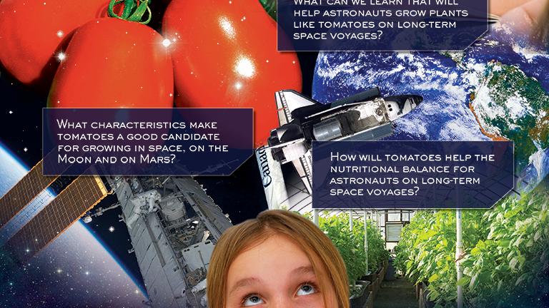 Tomatosphere Poster Design